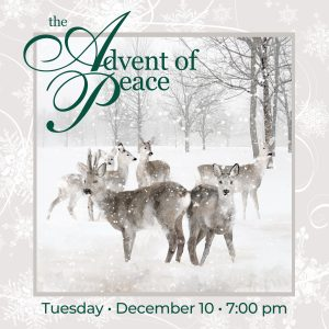 Bella Voce Chamber Choir presents: The Advent of Peace