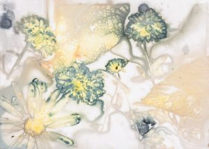 CYANOTYPE AND ECO-PRINT WORKSHOP WITH AIR CAROL WEBSTER